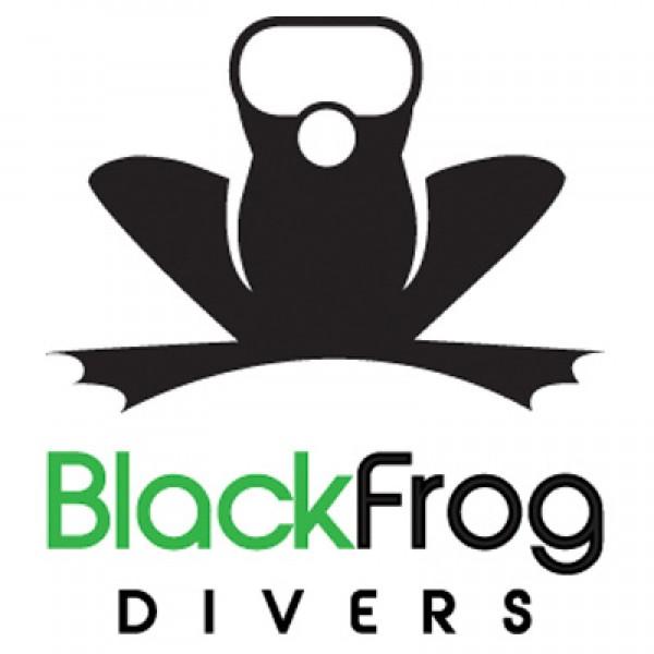 Black Frog Divers logo