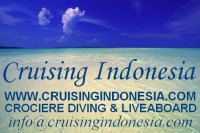 CRUISING INDONESIA reviews on ScubaTribe